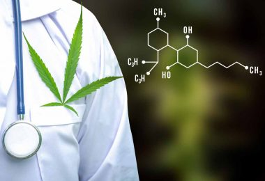 two-faces-of-marijuana-how-does-cbd-differ-from-thc_1200px